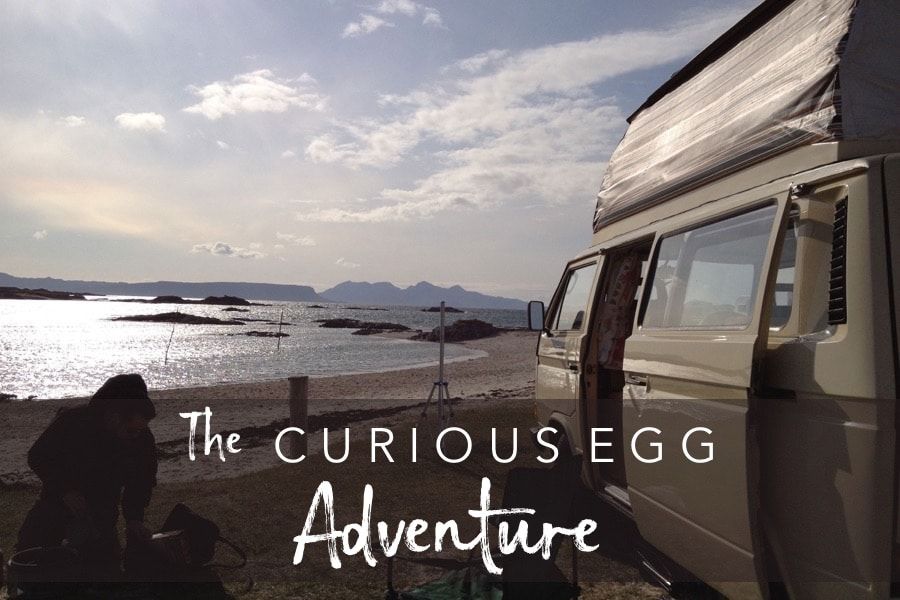 The Curious Egg Adventure