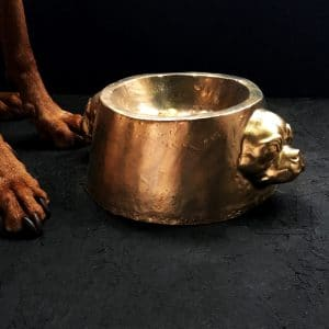 Gold Dog Bowl - lifestyle main