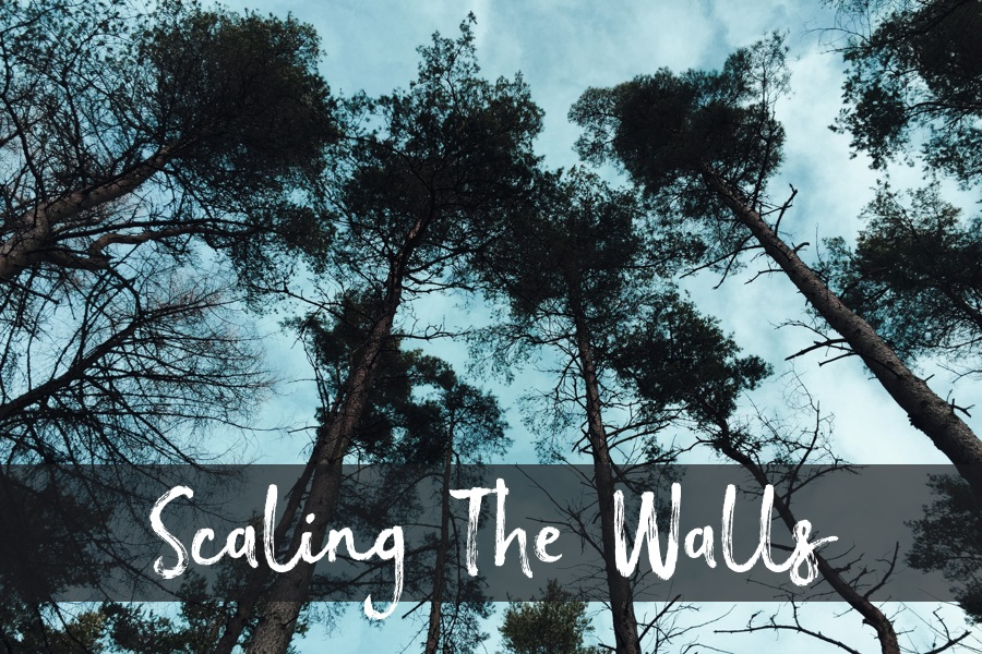 Scaling the Walls
