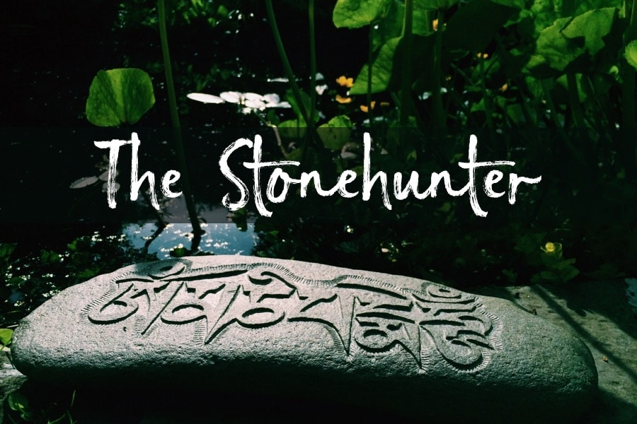 The Stone Hunter