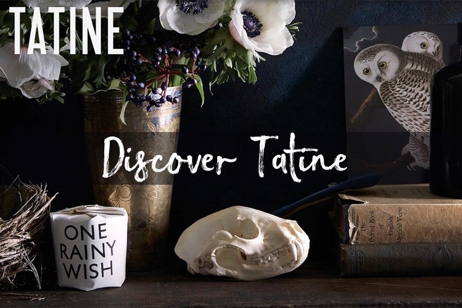 Discover Tatine