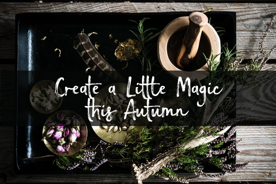 Create A Little Magic This Autumn