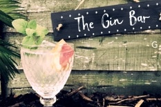 The Gin Bar