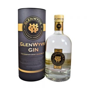 GlenWyvis Highland Gin bottle and box cutout on a white background